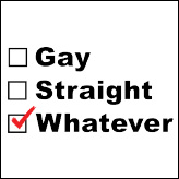 Gay Straight Whatever